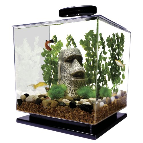 Tetra-29095-Cube-Aquarium-Kit-3-Gallon-0