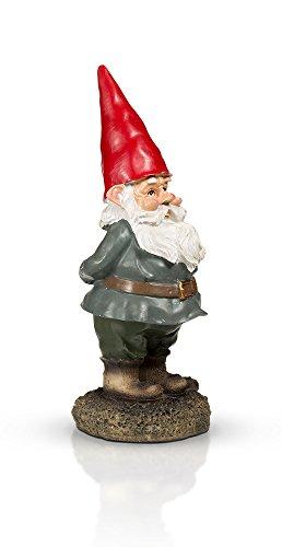 THE-Garden-Gnome-10-0-3